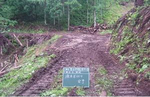 山作業道流木片付け、排水パイプ設置工事1