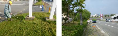 ゆめタウン筑紫野緑地帯手入れ工事3